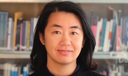 Prof. Dr.   Lianlian Liu (2018 – 2019)